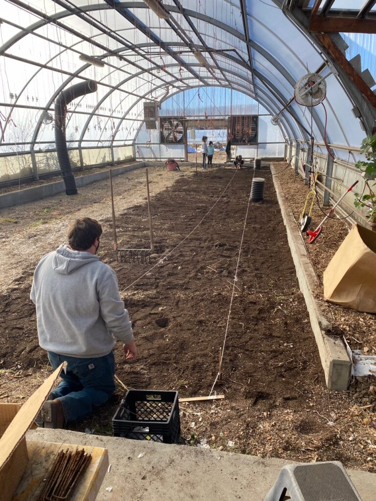 Person kneeling and planting seeds in a farm plot inside a giant gardening hoop house.