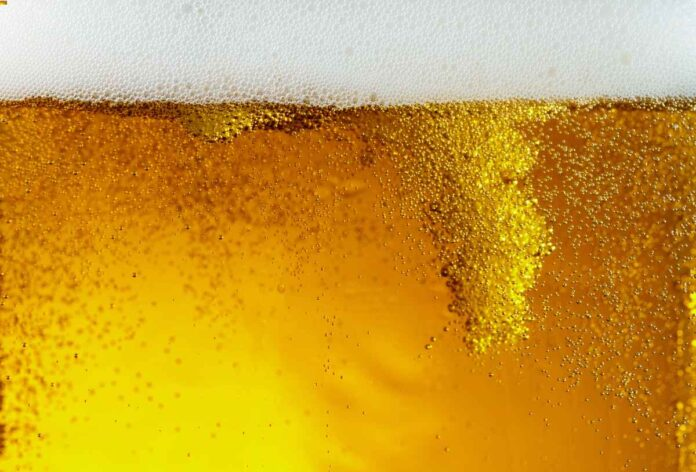Closeup of deep amber beer with bubbles rising and white foam head.