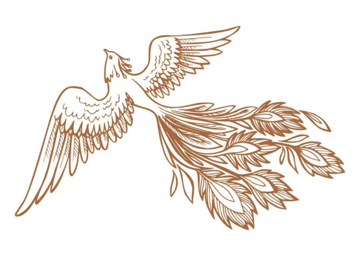 Outline drawing of a bird with spread wings and luxurious tail plumage.