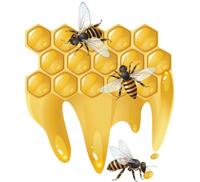 Illustration of three rows of hexagonal golden honeycomb cells dripping honey with three bees.