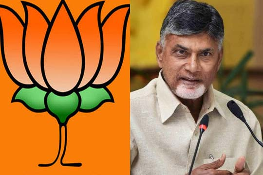 BJP bumper offer to Chandrababu