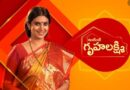 Grihalakshmi is looking for the happiness of Husband
