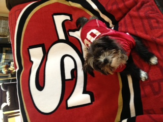 Everyone is in the 49er spirit!  Photo: Savita Shaikh
