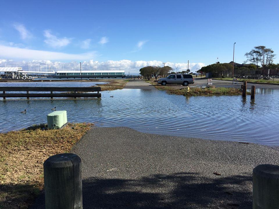 Bay Trail King Tide flooding at Oyster Point Marina—Wed., Nov. 25, 2015 Photo: S Brennan