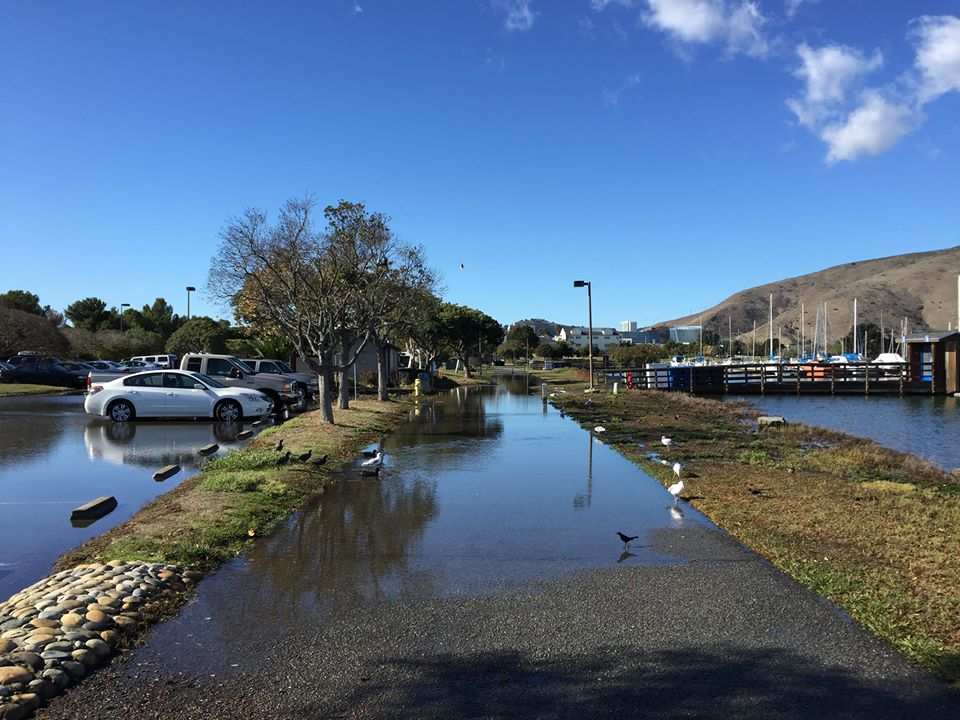 Bay Trail King Tide flooding at Oyster Point Marina—Wed., Nov. 25, 2015 Photo: S Brennan