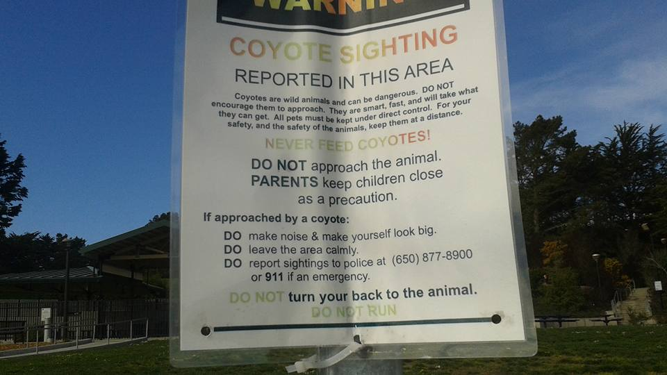 SSF Parks & Rec have put warning signs out at various parks as can be seen by the photo sent to us by Chris Willis