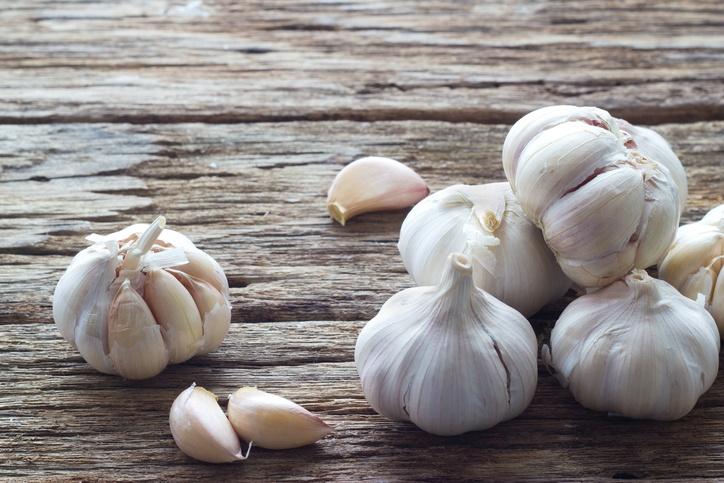 history of garlic