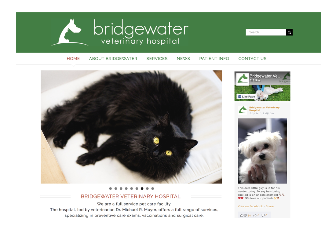Bridgewater Veterinary Hospitals