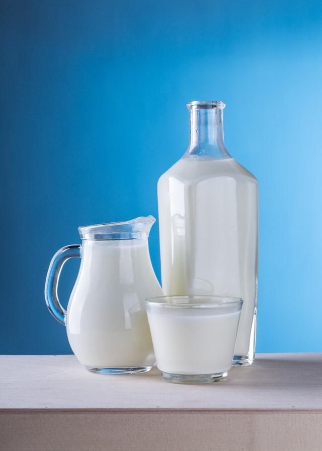 milk list of vegans foods