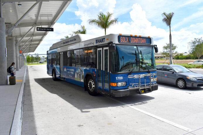 Public Transportation Tips for Tampa.