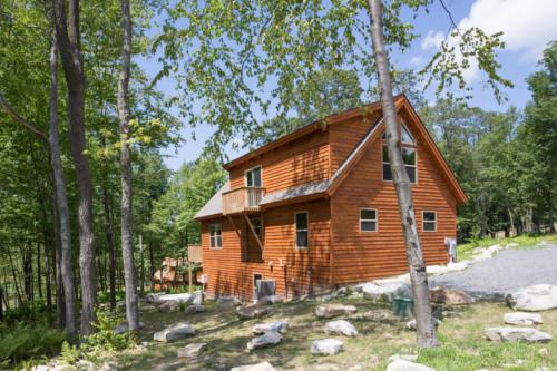 cabin loft v-4