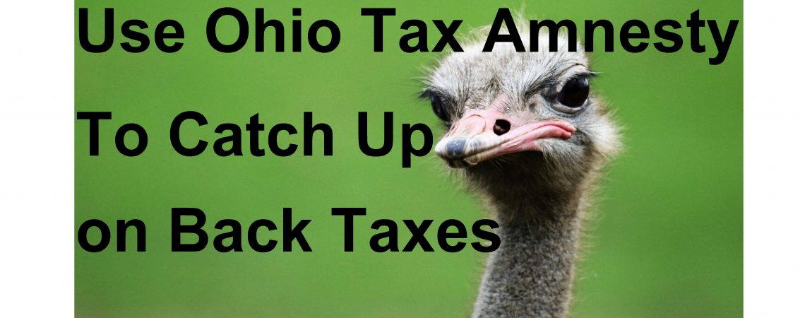 ohio back taxes expert