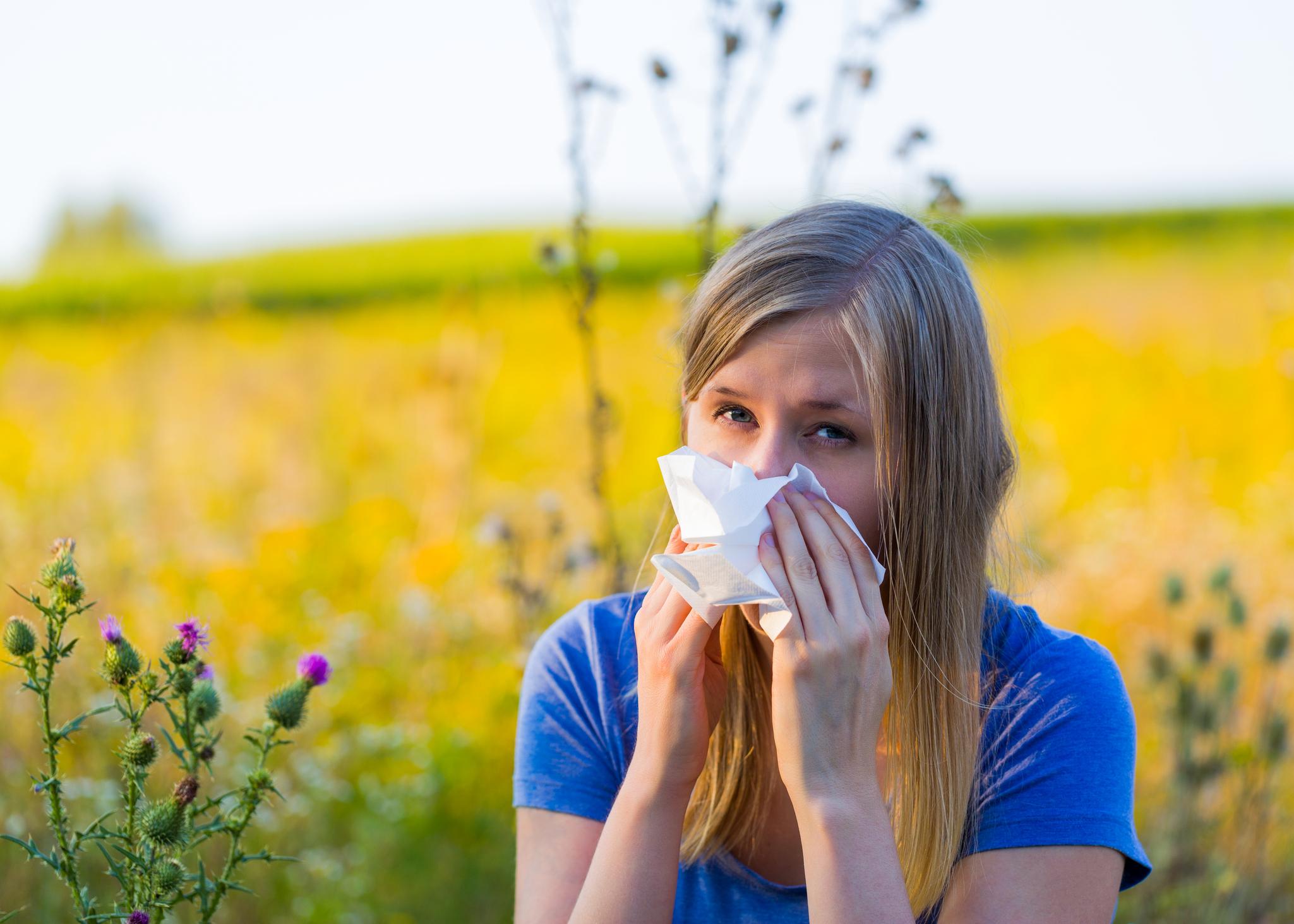Allergic Woman Using Handkerchief On Runny Nose. AAOA, Allergy
