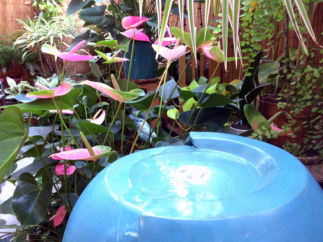 West LA Pilates solarium water fountain and flowers