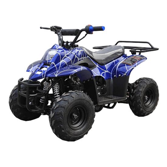 110cc Kids Quad by X-Pro