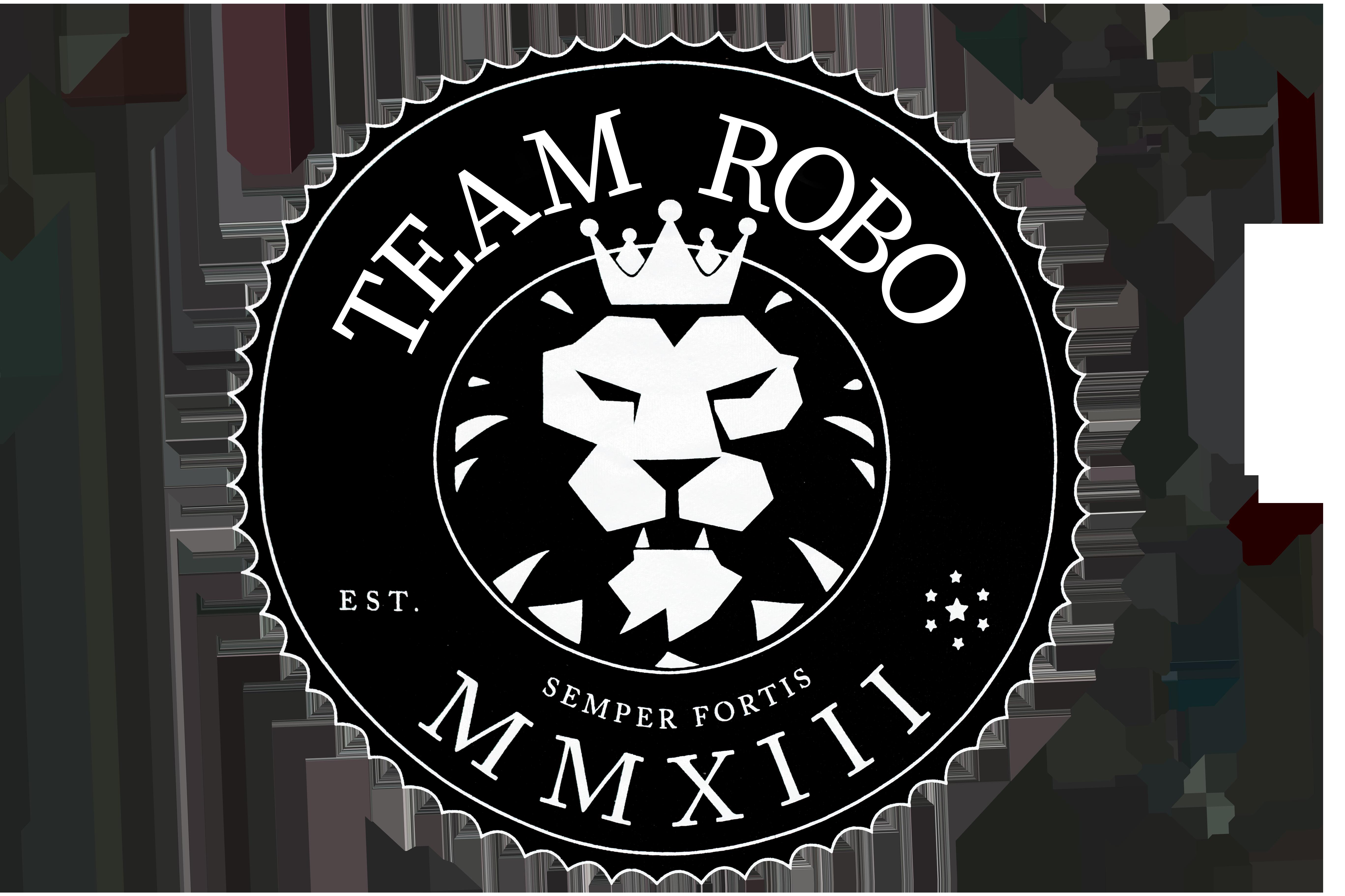 Team Robo