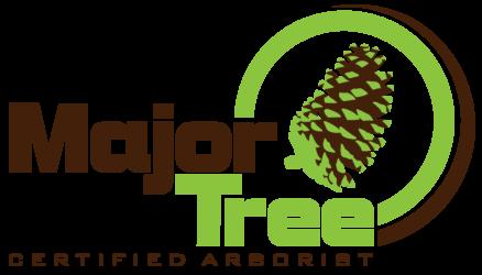 Major Tree