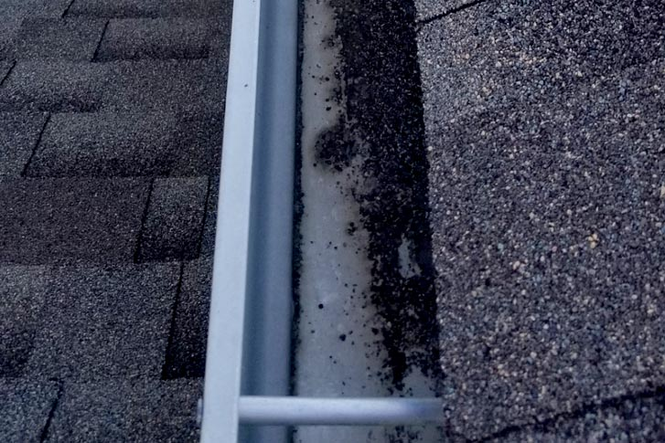 Close up view of clogged gutter in north Dallas
