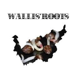 Wallis'Roots