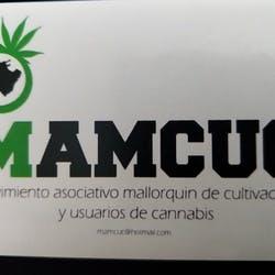 Mamcuc