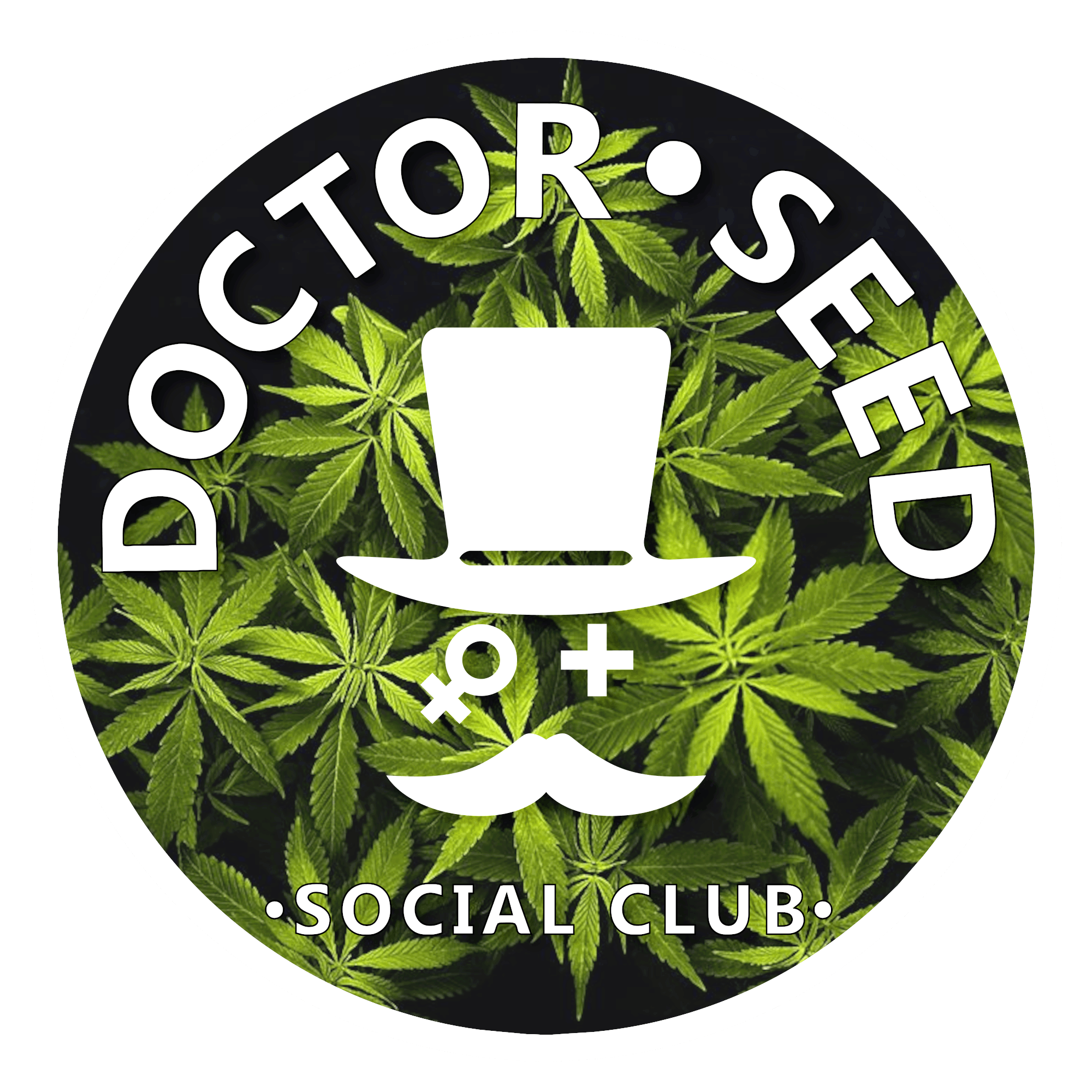 Doctor Seed