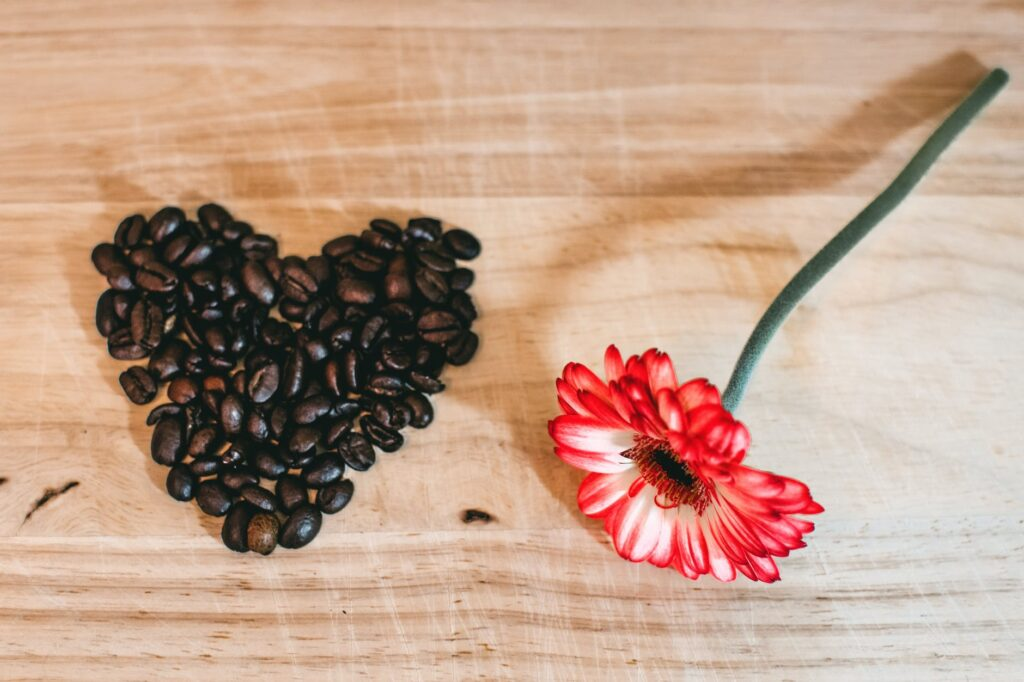 coffee beans with a stick of flower