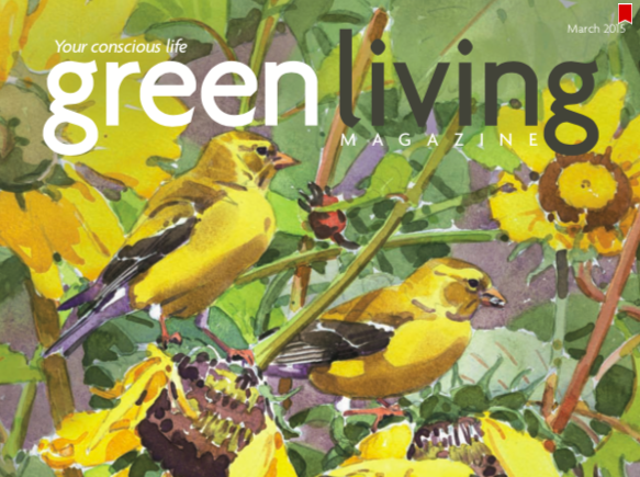 AZStRUT Featured in March, 2015 Issue of Green Living Magazine