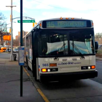 This is an image of a Beeline Eastchester Bus