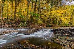 Autumn in the Brandywine Creek