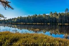 Summer at Randolph Lake