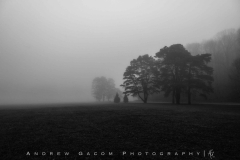 Rocky River Fog