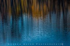 Reflection_1tif