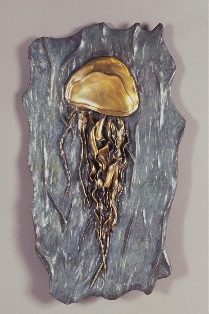 Bronze Jellyfish Relief