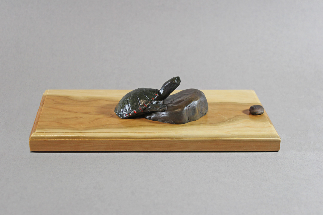 Painted Turtle climbing up onto a rock. The water is represented by the wood grain of a piece of Cherry wood