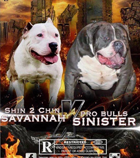 Sinister & Savannah