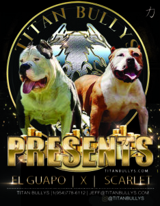 El Guapo & Scarlet