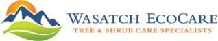 Wasatch Eco Care – Utahs Premier ISA Certified Arborist