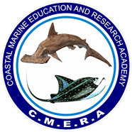 CMERA Logo