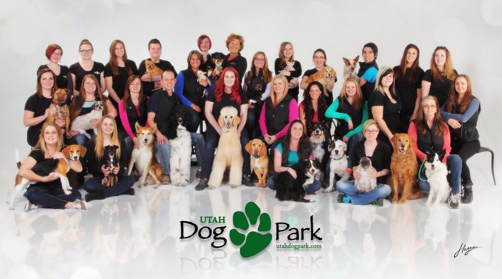 ACC DogPark Poster 2015