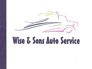 wise and son logo