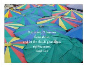 umbrellas - Isaiah 45-8