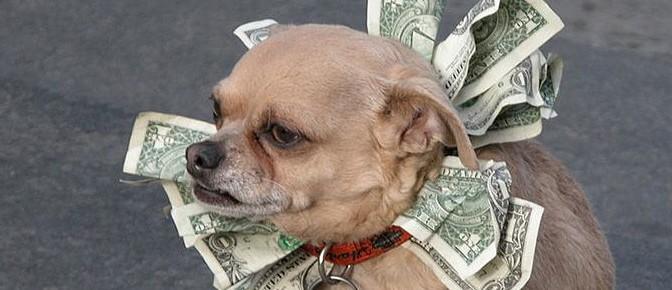 dog medical bills tax deduction