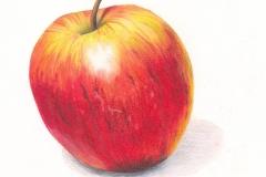 Delicious Apple-Coloured Pencil