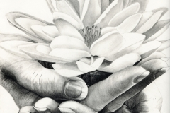 A Tranquil Moment - Graphite