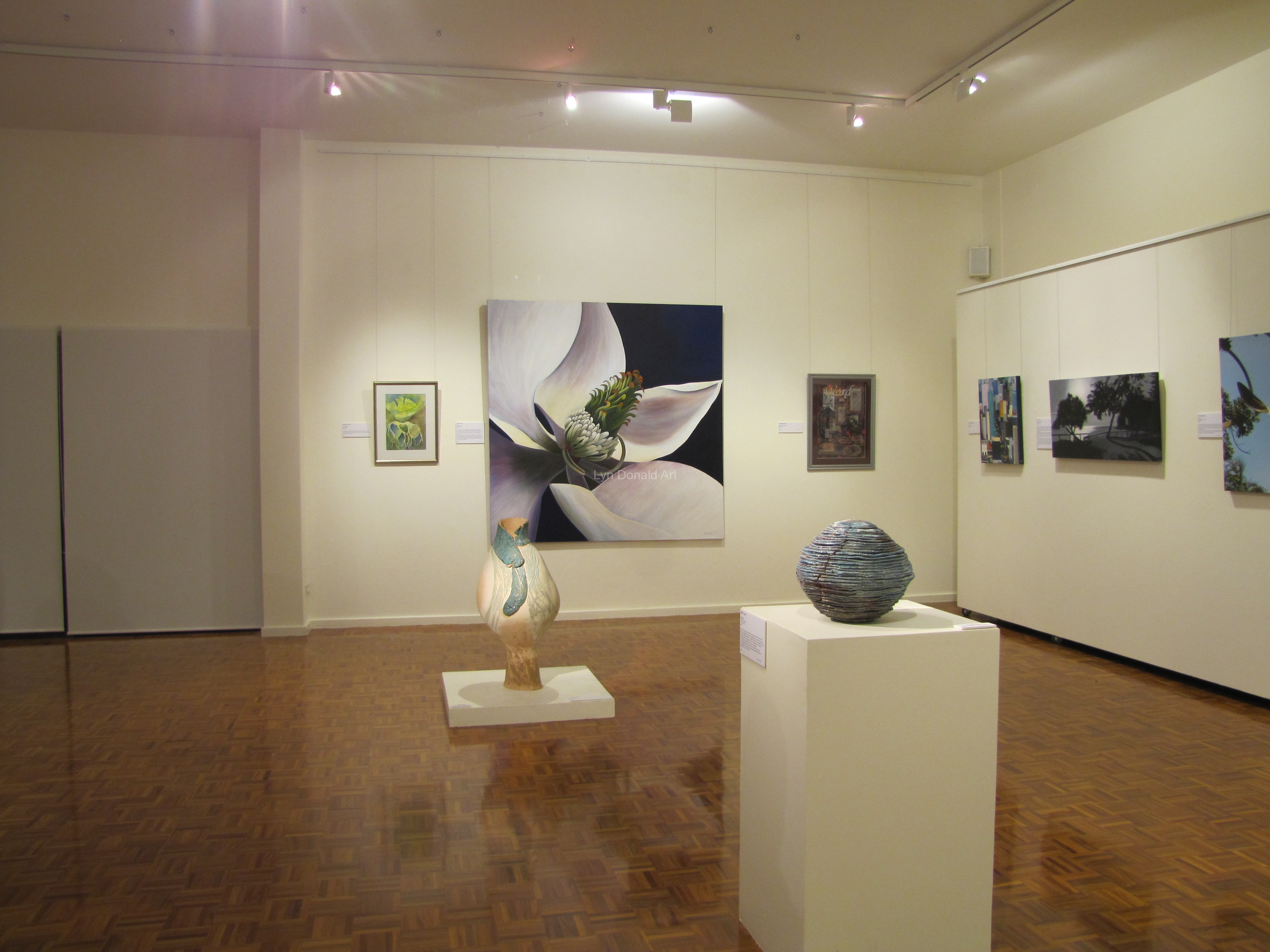 Lyn's Art Exhibited Noosa Exhibition