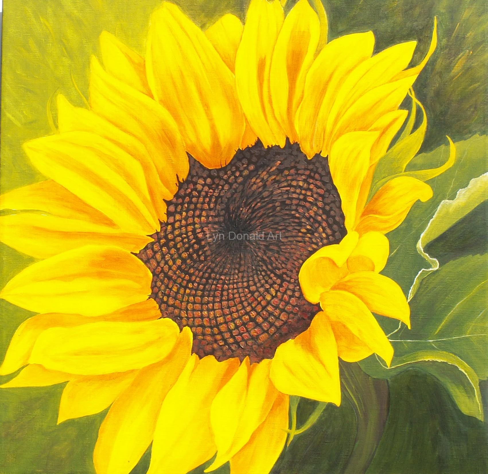 Sunflower (55 x 55cm)
