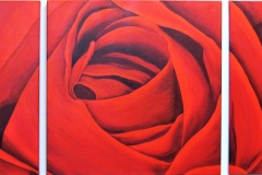 A Rose by Any Other Name(270 x270cm)