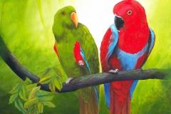 Eclectus Parrot (76 x 92cm