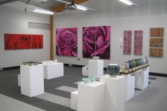 Lyn's Art ExhibitedNoosa Exhibition