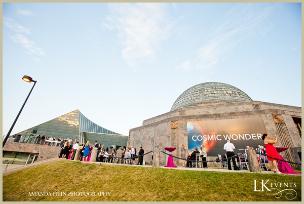 LK-Events-Weddings-Lincoln-Park-Zoo_1476